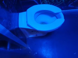 unblocking toilets by blocked drains Manchester